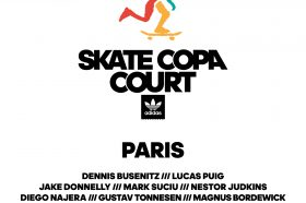 ADIDAS Skate copa court-image